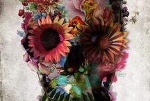 Skulls and Skeletons / by Carmen Terronez