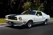 1976 Ford Mustangs / 1976 Ford Mustangs / by StangBangers