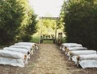 "beth""s wedding / by Nikki Martin"