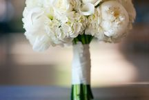Wedding - Flowers / by Sandy Sokoloski