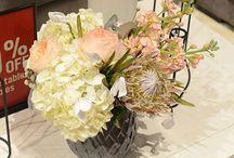 floral / by Kathryn Humphreys
