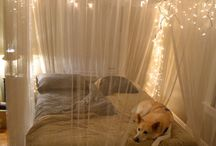 Apartment Decor Ideas / by Karrye Ormaner