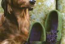 wieners / by April Hudson