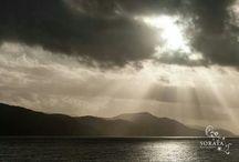 Scotland / by Lynda Pawling