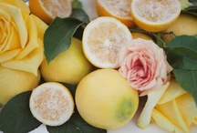 My Lemon Obsession! / by Parties By Alex