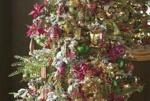 Christmas Trees / Everything wonderful about Christmas starts with a tree and all the colorful trimmings / by Diana Haynes