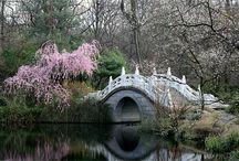 Gardens / by Barbara Highsmith