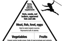 Going Primal / Things to help with living the Primal Blueprint and Paleo lifestyles / by Dick Stone