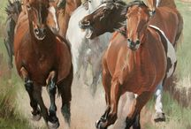 Equine Art / Super / by Don Myers