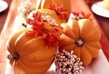 fall / by Sarah Miller