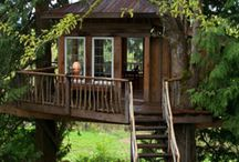 Treehouses / by Laurie Goldstein