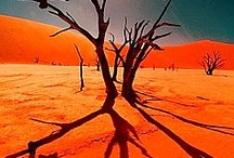 Namibia / by Holbrook Travel