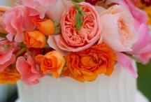 Cupcakes/Cakes/Cookies / by Sherrie Corrington