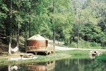 Things to Do Near Charlotte / by Scoop Charlotte