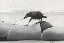 Crow Stuff / by Elizabeth Martin