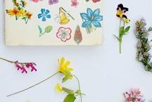 A floral arrangement  / by Christine Pitt