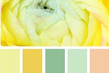 colour ways / by Tiffany de Heus
