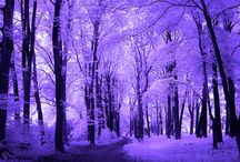 ♥ prettiful.purpular ♥ / slightly obsessed with purple / by ~betty~