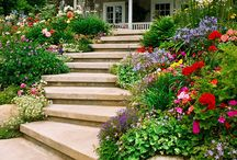 Landscape Design Ideas & Inspiration / This board is a compilation of landscaping ideas including plants, designs, form & color, and hardscapes. In general, any landscaping ideas for inspiration! If you enjoy gardening be sure to check out my other gardening boards! / by Doug Harrington