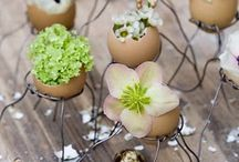 Easter Decorations / by Design Rulz
