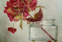 WaterColors / by Alicia Calhoun-Mackes