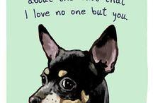 Dogs / by Alice Hemingway