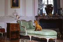 Deyrolle's Parisian Taxidermy / The golden age of taxidermy was during the Victorian era, when mounted animals became a popular part of interior design and decor.   / by Kellie Patry