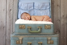 Baby Photography / by Michelle Brown