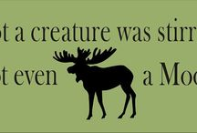 Moose Obsession. :) / by Katie Bundy