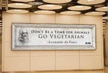 Vegetarian / by Scooter Phoenix