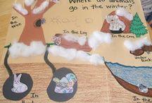 Classroom Science Bonanza / by Jennifer Youngblood