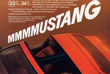 1981 Ford Mustangs / 1981 Ford Mustangs / by StangBangers
