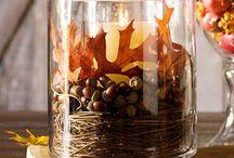 Halloween/Thanksgiving  / by Erin Dotson