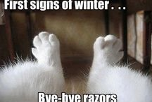 Funnies that make me laugh!!! / Humor / by Christie L.