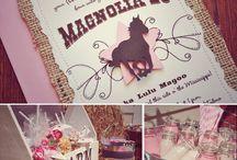 Western / Barnyard Birthday / by Rachel - Haute Chocolate