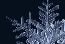 Snowflakes / by Cathy Howie