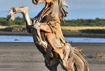 Driftwood / by Hanne Melgaard
