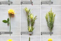 Flowers / by Kmb Floral Page