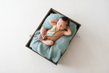 Newborn Photography / by Samantha Hillery