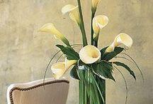 Flower Arrangements / by Linda Diedrich