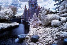 Disneyland / by Chuck M