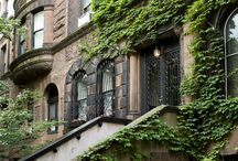 NEW YORK  One day.  My dream...' / by Purita Avila