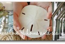 Favorite Blogs / by Karissa Greathouse