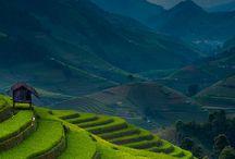 Beautiful Terrain / by Alison LeGarie