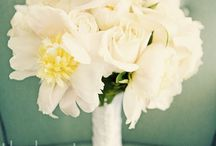 Wedding / by Mary Martin