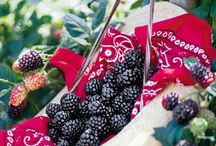Blackberry Pickin / by Sheila Tanner