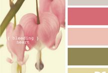 Colors | Pretty Palettes / by ClickinMoms