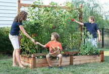 Gardening Ideas / by Tammy Gonzales