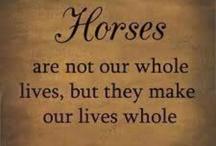 Horses! / by Kathy Simmons Siegmund