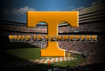 Tennessee VOLS!! Its a way of LIFE!  / by LeeAnn Bailes